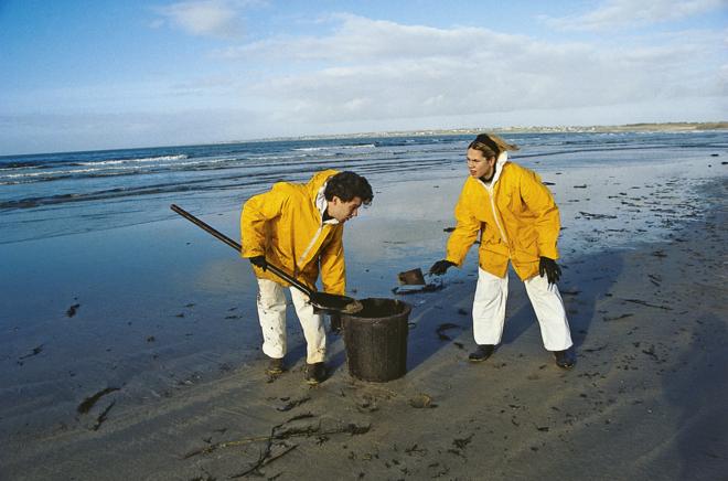 nettoyage des plages apres la marée noire